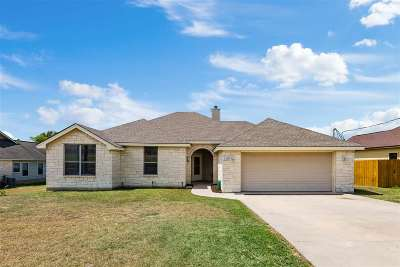 Marble Falls Single Family Home For Sale: 1308 Northwood Dr