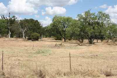 Buchanan Dam Single Family Home For Sale: 810 Old Spanish Trail