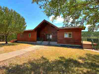 Burnet County Single Family Home For Sale: 105 Junction