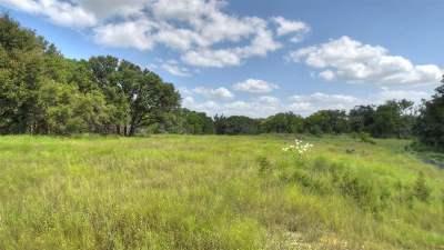 Bell County, Burnet County, Coryell County, Lampasas County, Mills County, Williamson County, San Saba County, Llano County Farm & Ranch For Sale: Tract 5 Fm 2340