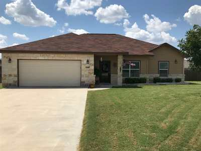 Burnet TX Single Family Home For Sale: $234,900