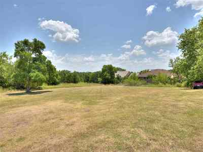 Marble Falls Residential Lots & Land For Sale: Lot 44 Amy