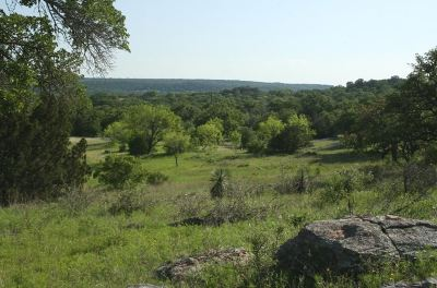 Burnet Farm & Ranch For Sale: 301 Rocky Hollow