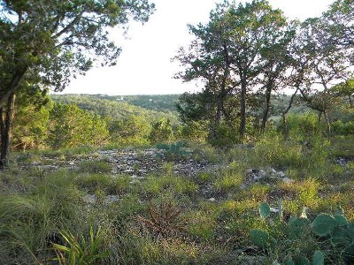 Residential Lots & Land For Sale: 517 Horseshoe Ridge