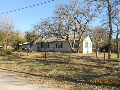 Ingram Single Family Home For Sale: 107 College St