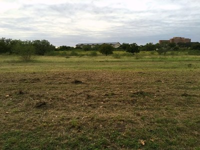 Residential Lots & Land For Sale: 199 Spur 100