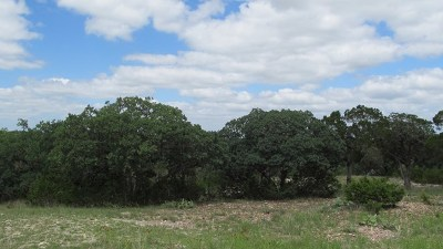 Hunt Residential Lots & Land For Sale: 195 Hunt Valley View Rd