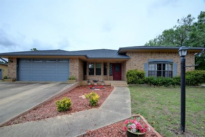 Kerrville Single Family Home For Sale: 317 Gabe Rd
