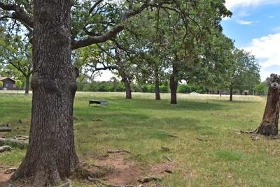 Fredericksburg Farm For Sale: Friendship Lane