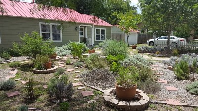 Kerrville Single Family Home For Sale: 501 Lewis Ave