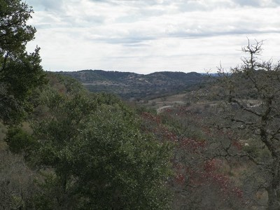 Residential Lots & Land For Sale: 231 Lookout Point