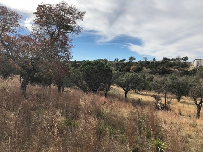 Residential Lots & Land For Sale: 486 Cedar Mountain Rd