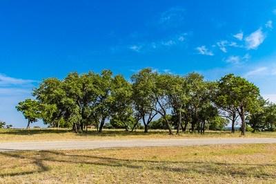 Ingram Residential Lots & Land For Sale: 379 Cypress Estates Pkwy W
