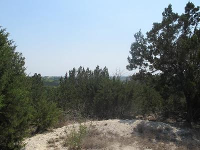 Kerrville Residential Lots & Land For Sale: 99 Bluff View Circle