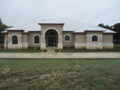 Kerrville Single Family Home For Sale: 377 Kerrville Country Dr