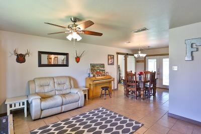 Fredericksburg Single Family Home For Sale: 625 S Creek
