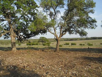 Gillespie County, Kerr County, Kimble County, Bandera County, Real County, Edwards County, Mason County, Uvalde County, Medina County, Kendall County Farm For Sale: Klein Branch Rd