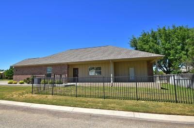 Fredericksburg Single Family Home For Sale: 1718 Cherrywood Dr