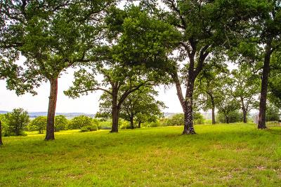 Kerrville Residential Lots & Land For Sale: 1084 Pinnacle View Dr