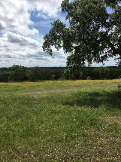 Kerrville Residential Lots & Land For Sale: 200 Horizon Blvd