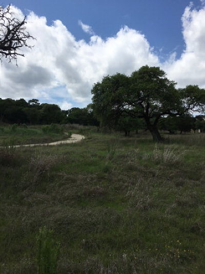 Kerrville Residential Lots & Land For Sale: 142 Box Canyon Rd