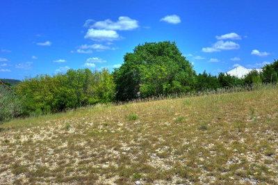 Kerrville Residential Lots & Land For Sale: 220 Castle Pines Dr