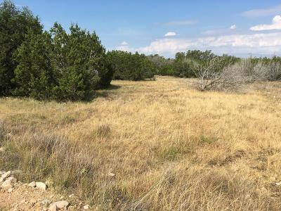 Gillespie County, Kerr County, Kimble County, Bandera County, Real County, Edwards County, Mason County, Uvalde County, Medina County, Kendall County Farm For Sale