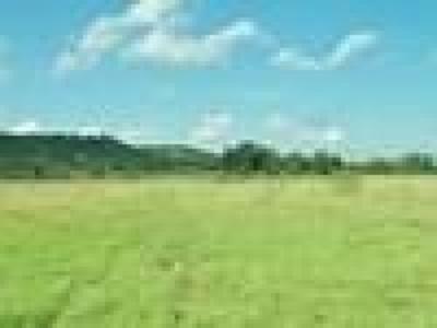 Farm For Sale: Armory Rd