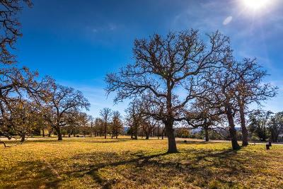 Kerrville Residential Lots & Land For Sale: 4209 Stone Creek Circle