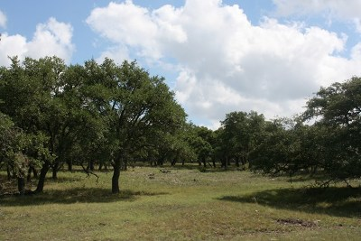 Gillespie County, Kerr County, Kimble County, Bandera County, Real County, Edwards County, Mason County, Uvalde County, Medina County, Kendall County Residential Lots & Land For Sale: CR 476