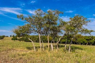 Ingram Residential Lots & Land For Sale: 000 Cypress Estates Pkwy W