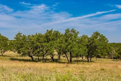 Ingram Residential Lots & Land For Sale: 400 Cypress Estates Pkwy W