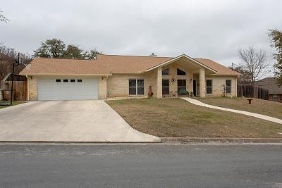 Kerrville Single Family Home For Sale: 210 Skyview Dr