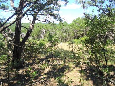 Gillespie County, Kerr County, Kimble County, Bandera County, Real County, Edwards County, Mason County, Uvalde County, Medina County, Kendall County Farm For Sale: 1111 Spring Country Ranch Rd