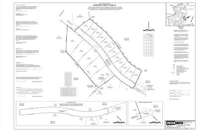 Kerrville Residential Lots & Land For Sale: 1009 Comanche Hills Dr