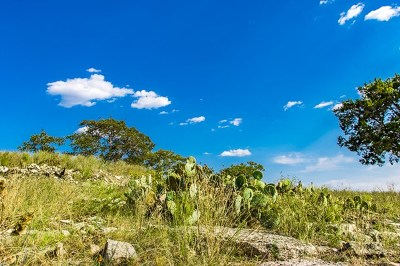 Ingram Residential Lots & Land For Sale: 109 Evening View Point