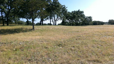 Ingram Residential Lots & Land For Sale: 00 Guadalupe Grand View