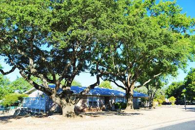 Kerrville Single Family Home For Sale: 124 Poco Vista Dr S