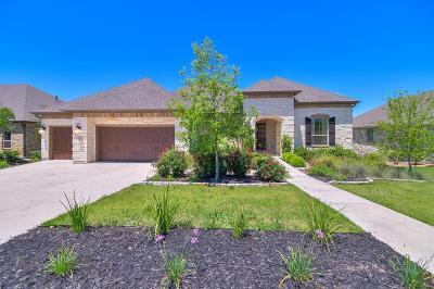 Boerne Single Family Home For Sale: 105 El Cielo