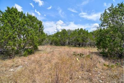 Kerrville Residential Lots & Land For Sale: 134 Turtle Creek View