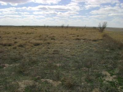 Bailey County, Lamb County Farm & Ranch For Sale: Farm Road 1490