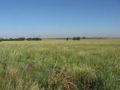 Farm & Ranch Sold: State Highway 70