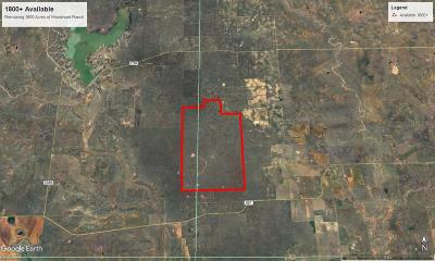 Spur TX Farm & Ranch For Sale: $1,620,000