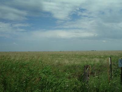 Petersburg TX Farm & Ranch For Sale: $225,000