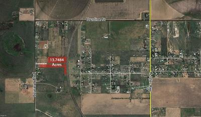 Lubbock Residential Lots & Land For Sale: 1510 N County Road 1300