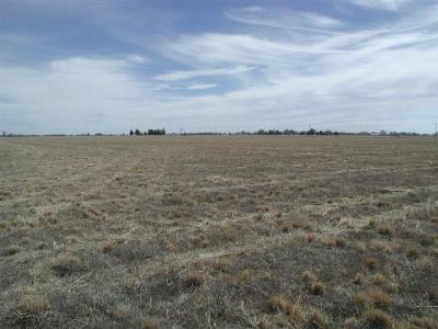 Muleshoe TX Farm & Ranch For Sale: $60,000
