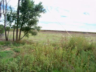 Residential Lots & Land For Sale: County Road 2800