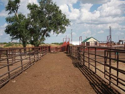 Earth TX Commercial For Sale: $750,000