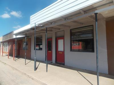 Abernathy Commercial For Sale: 914 Ave D