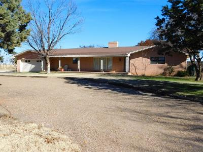 Bailey County, Lamb County Single Family Home For Sale: 47730 South Farm Road 596